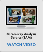 Microarray Analysis Service (SAM)